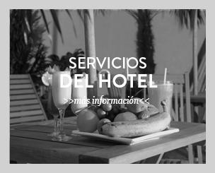 servicios bys